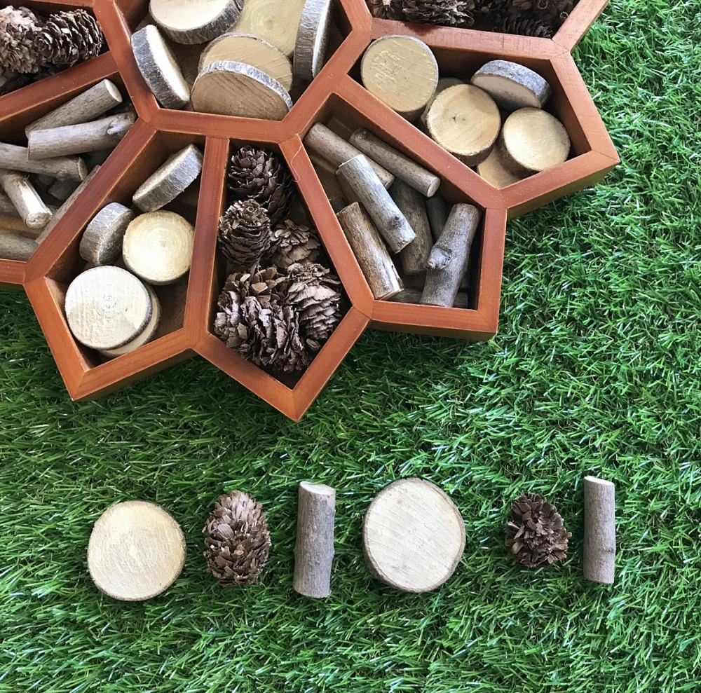 Flower sorting tray with natural resources used to create patterns