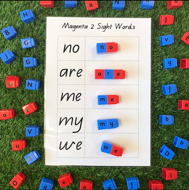 Phonic cvc activity matching key sight words  with letter blocks on a grass background
