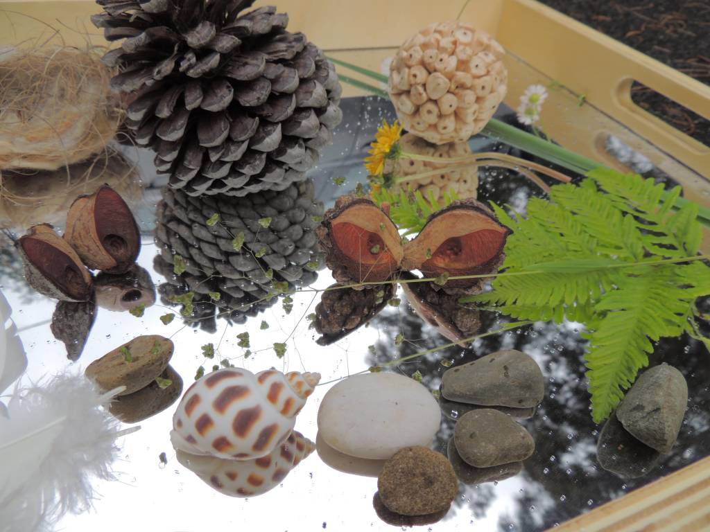 Mirrors and Reflections, natural loose parts in mirrored tray